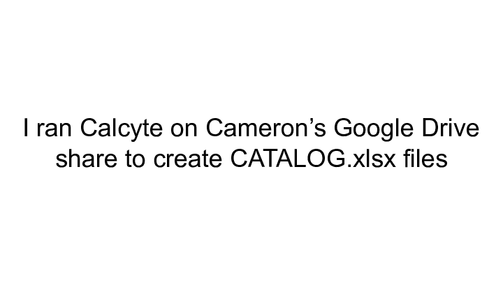 I ran Calcyte on Cameron's Google Drive ||     share to create CATALOG.xlsx files