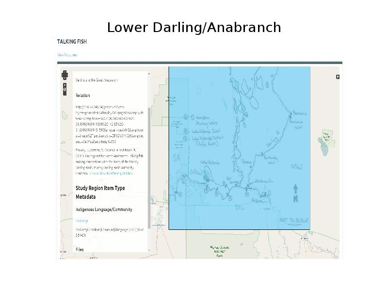 Lower Darling/Anabranch