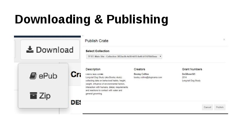 Downloading & Publishing